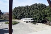 patio_DSC_0080